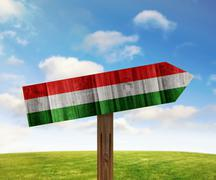 Hungary wooden direction sign on nature background - stock illustration