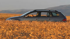 Sweet little driver at the car wheel in a cereal field, beautiful evening light Stock Footage
