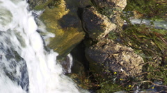 Video of the bottom of a waterfall shot in Israel. - stock footage