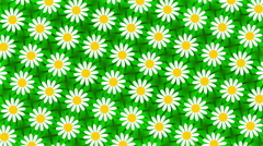 green abstract background, flower, loop - stock footage