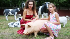 Mother and daughter sit near artificial pig near cows Stock Footage