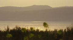 Yellow flowers and the Sea of Galilee at dusk shot in Stock Footage