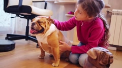 Pretty girl strokes english bulldog in room with table and chair Stock Footage