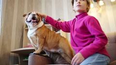 Pretty girl strokes english bulldog on armchair in room Stock Footage