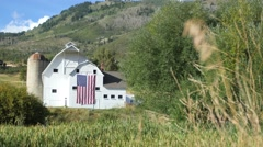 Barn flag through grass Stock Footage