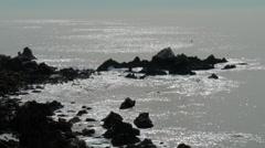 Moon light on the ocean surface Stock Footage