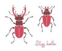 Male and female stag beetle, Lucanus cervus, Stag-beetle Stock Illustration