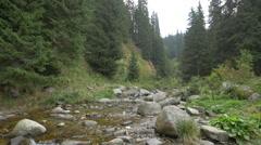 Small mountain river, Hunedoara Stock Footage