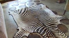 Stock Video Footage of Zebra skin rug on floor