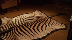 Zebra skin rug on floor Stock Footage