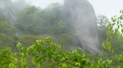 View of forest in Asian island Stock Footage