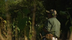 Hunter taking aim and shooting while dove hunting - stock footage