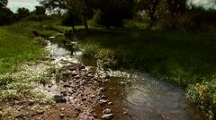 Flowing water in creek Stock Footage