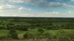 View of green landscape Stock Footage