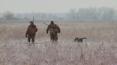 Hunters walking with dog in marshy land - stock footage