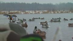 Motorized duck in lake Stock Footage