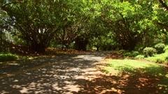 Car passing on road near Kauai Beach Villas Stock Footage