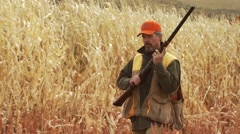 Hunter taking aim and shooting on pheasant while hunting - stock footage