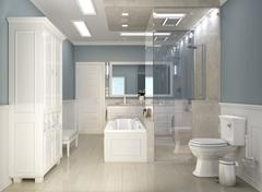 Classic modern bathroom with wc - stock illustration
