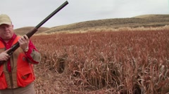 Hunter taking aim and shooting on pheasant while hunting Stock Footage