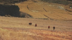 Group of hunters waking in ranch for pheasant hunting - stock footage