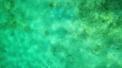 slow motion under water - stock footage