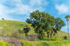 Landscape around Galilee Sea - Kinneret Lake Stock Photos