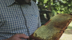 Beekeeper with a honeycomb in his hands 02 Stock Footage