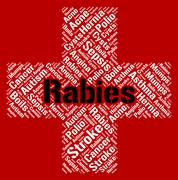 Rabies Word Indicates Poor Health And Affliction Stock Illustration