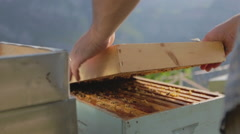 Beekeper smoking a Bee Hive 02 Stock Footage