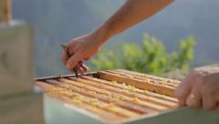 Beekeper smoking a Bee Hive 03 Stock Footage