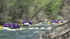 Rafting down the Arkansas River - stock footage