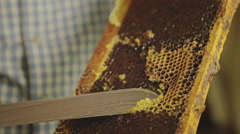 Honey maker cleaning a honeycomb full of honey Stock Footage