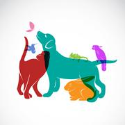 Vector group of pets - Dog, cat, parrot, chameleon, rabbit, butterfly, hummin - stock illustration