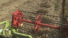 Combine header reaps a crop of wheat - stock footage