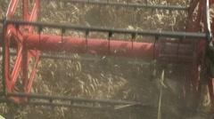 Harvester header reaps wheat - stock footage