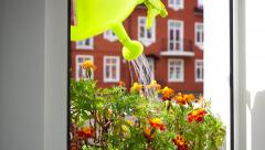 Girl opening the window and watering the flowers Stock Footage