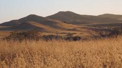 Mountain wheat field Stock Footage
