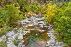 Alpine stream in France. Stock Photos