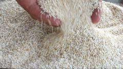 Amaranth seed scooped and sifted by hands Stock Footage