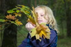 four-year girl playing with autumn leaves - stock photo