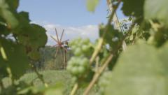 Vine With Grapes And Wind Wheel - Slide (Canon Log) Stock Footage