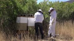 Beekeepers at rural farm beehive bees swarming 4K 009 Stock Footage