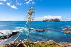 Stock Photo of Volcanic Island view from Sao Miguel, Azores