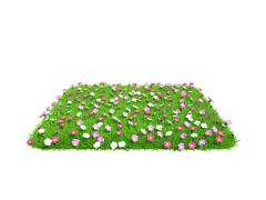 Fresh green grass piece with flowers of land isolated on white background Stock Illustration