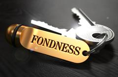 Fondness written on Golden Keyring - stock illustration
