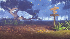 Old signpost in a misty autumn forest 4K Stock Footage