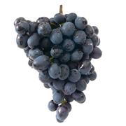 Bunch of ripe red grapes - stock photo