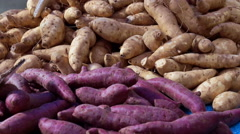 Video purple and yellow yams pile in market Stock Footage