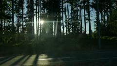 Highway Road - Forest Sunset - Side View - stock footage